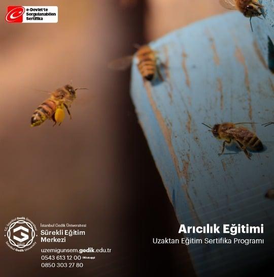"""İstanbul Gedik Üniversitesi Sürekli Eğitim Müdürlüğünce düzenlenen """"Arıcılık Eğitimi Sertifika Programı"""" kapsamında arı yetiştiriciliği kursunu tamamlayan arıcılara sertifikaları dağıtılacaktır. Düzenlenen bu kurs sayesinde;"""